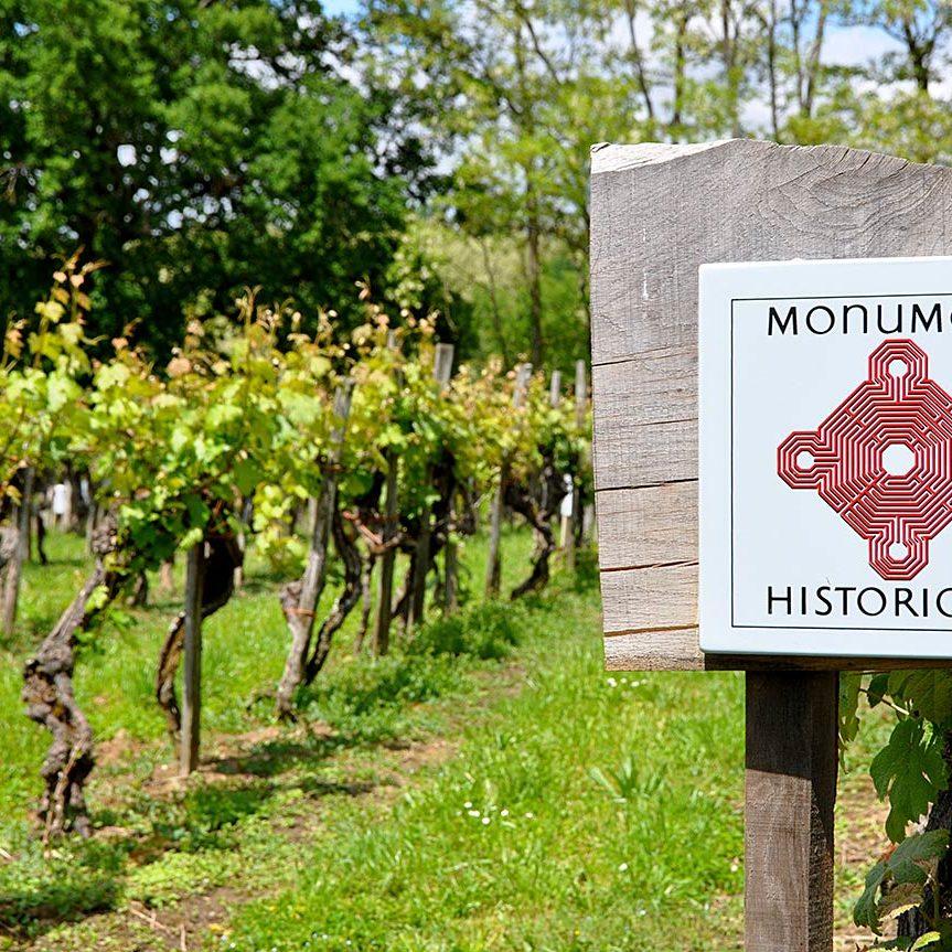 Saint-Mont-monument-historique