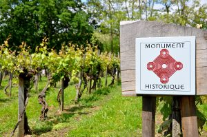 Visite – Vigne inscrite aux Monuments Historiques
