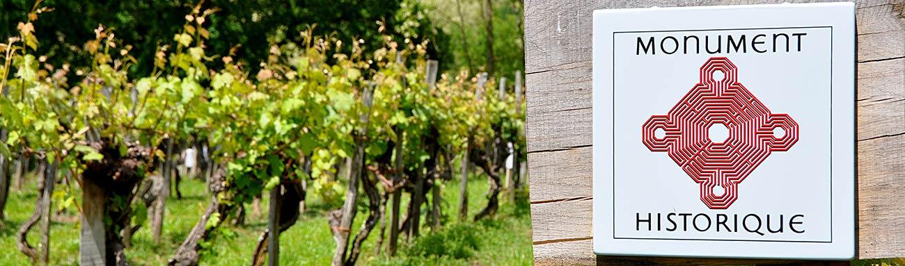 Préparer ses vacances dans le vignoble de Saint Mont